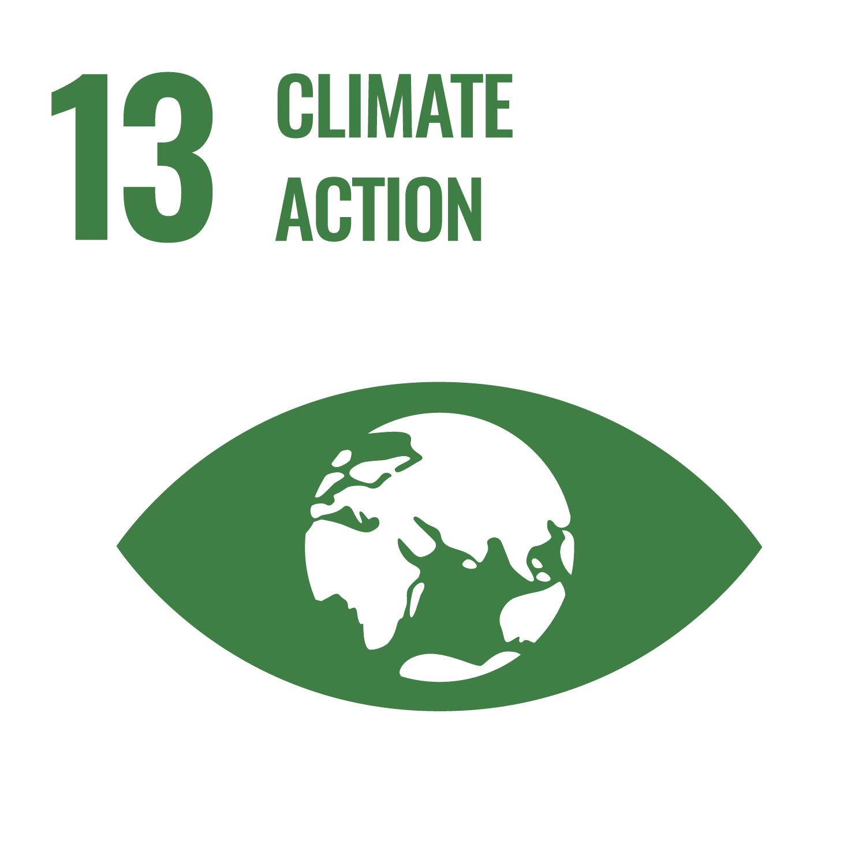 SDG13 Climate Action
